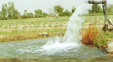 pumps-india