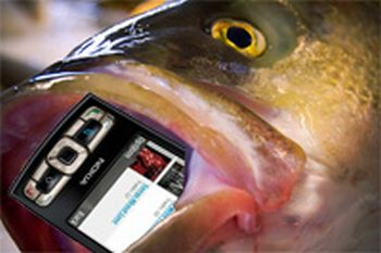 fish-nokia-cellphone