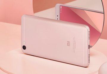599aeb3f8b2ea-360x250.jpg